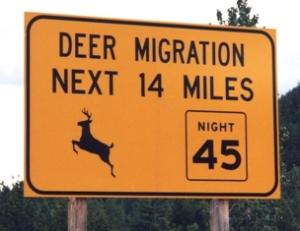 04 Deer migration sign